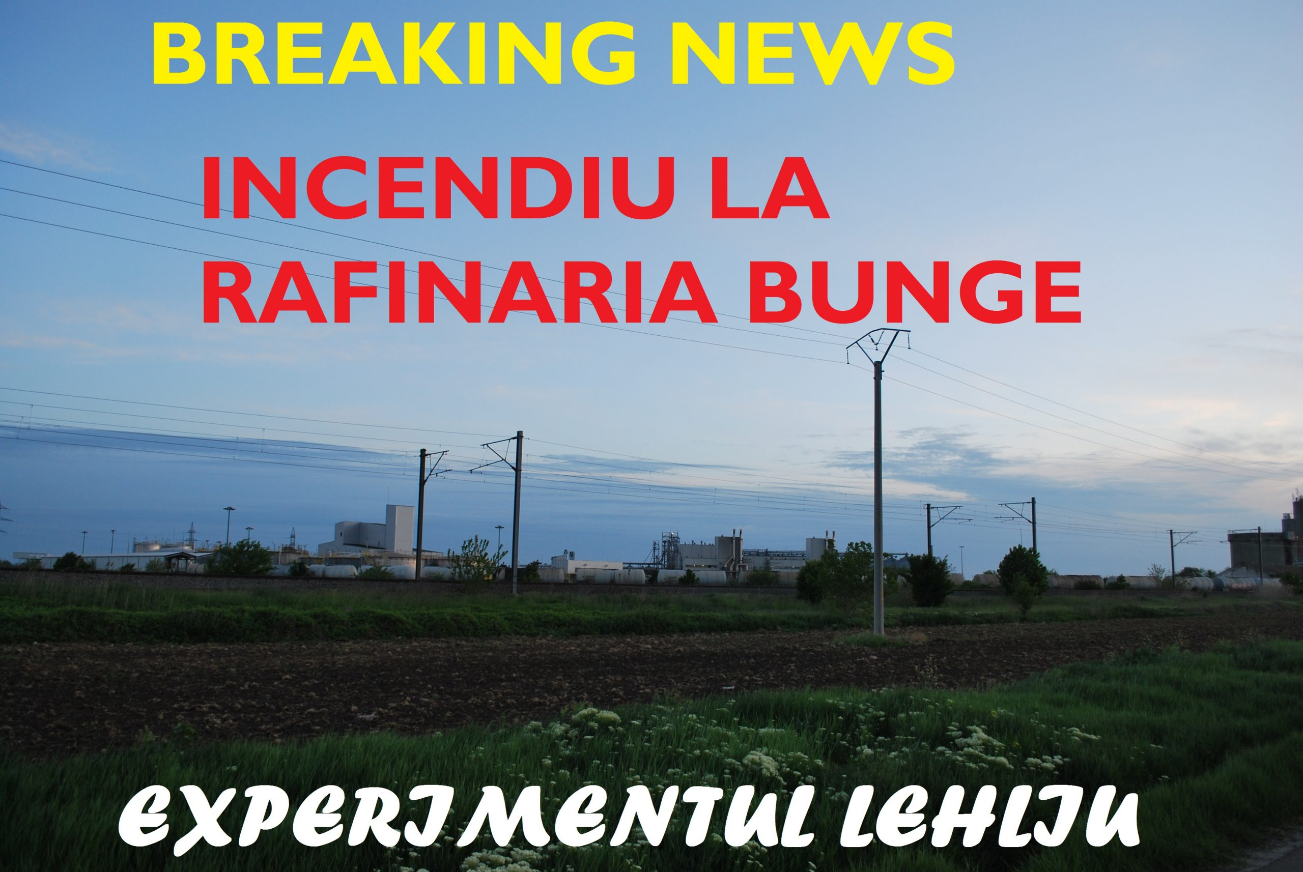 SC bunge Romania SRL